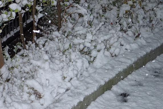 今季初積雪