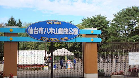 仙台ひとり旅〜八木山動物公園編
