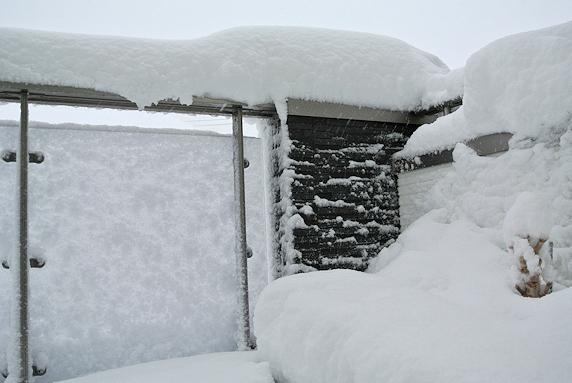 積雪30cm超え、吹雪は続く