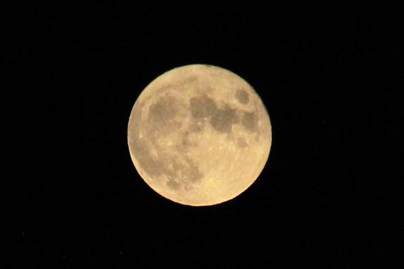 中秋の名月撮ったった