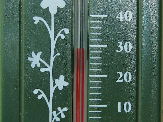 気温29.5℃