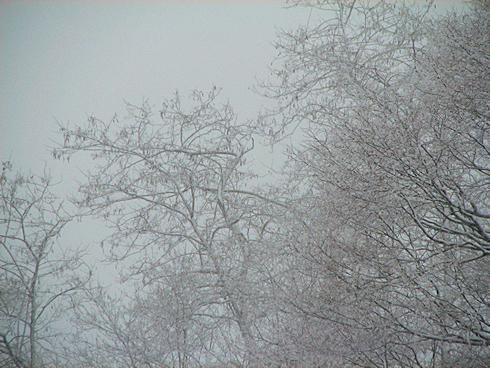 現在積雪20cm