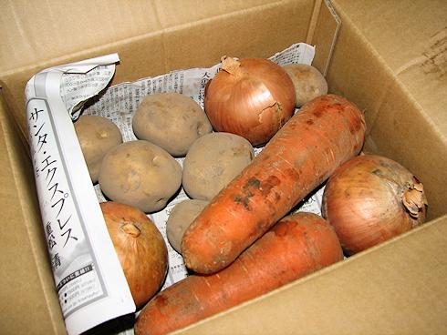 らでぃっしゅぼーやの「濃い野菜セット」
