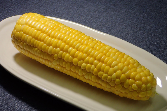 トウモロコシの季節