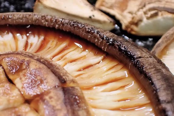 原木しいたけを焼いて食べる