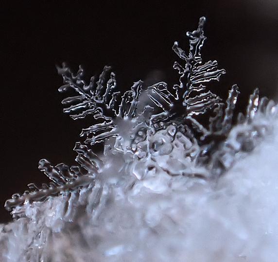 雪の結晶 〜Merry Christmas